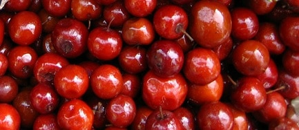 Image result for ber fruit