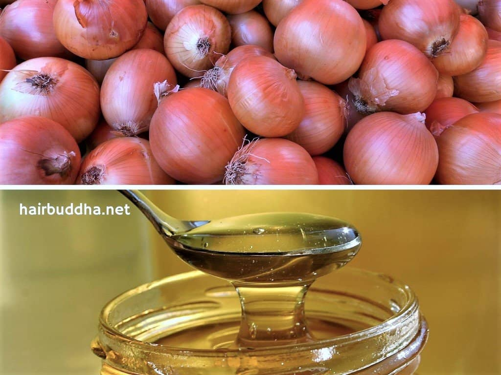 onion and honey for hair loss