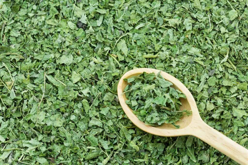 Nettle to stimulate new hair growth