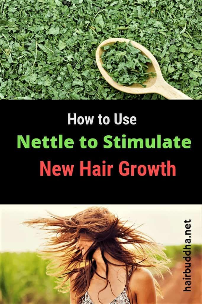 nettle for hair growth