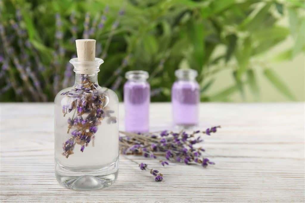 lavender essential oil for hair growth
