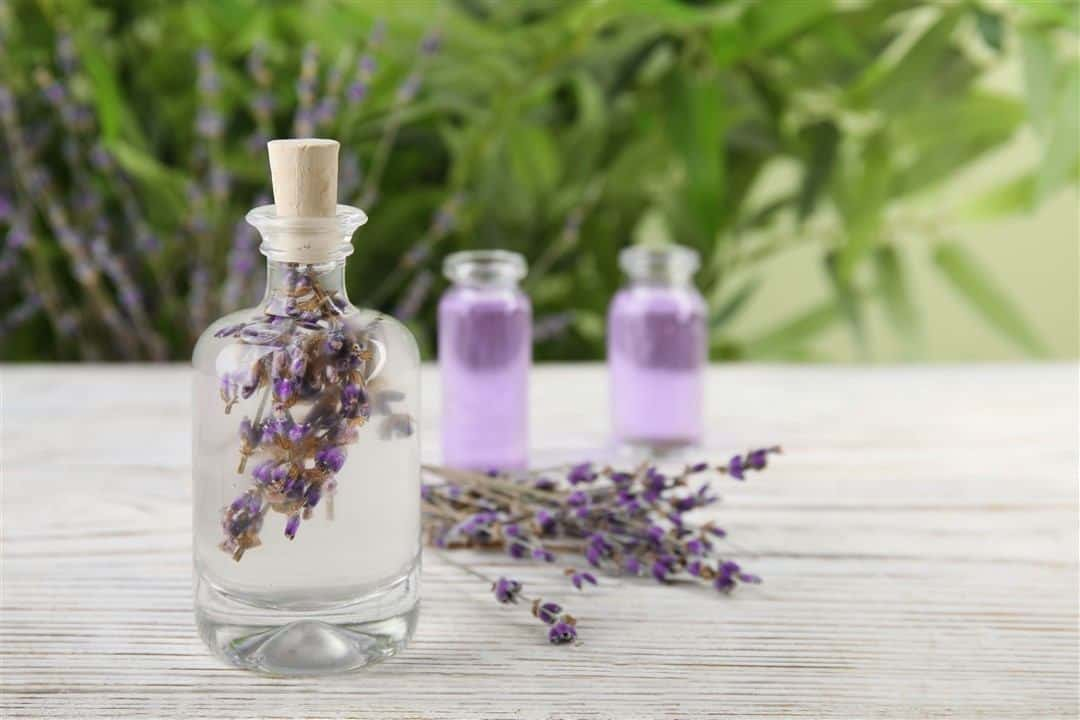 lavender essential oil for hair growth get thick