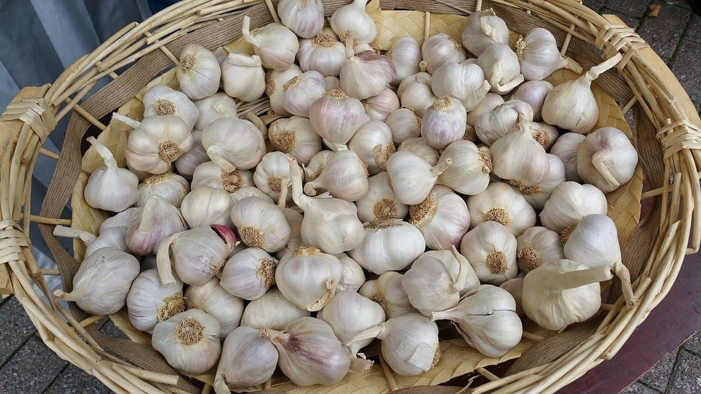 Garlic in a Basket