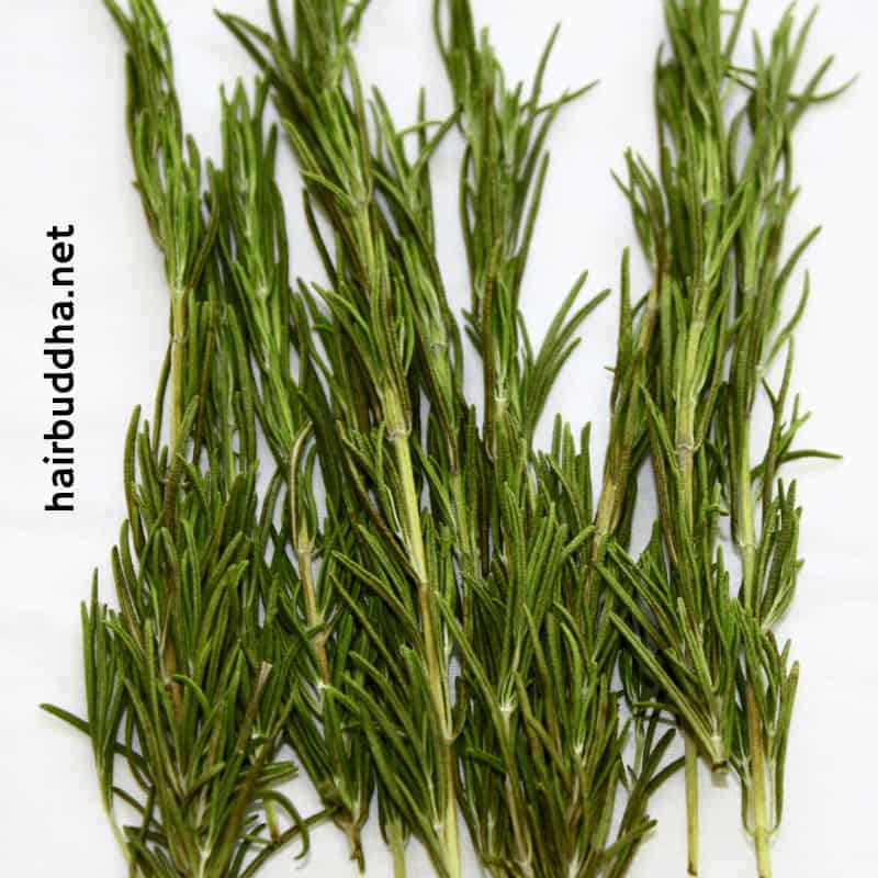 rosemary leaves