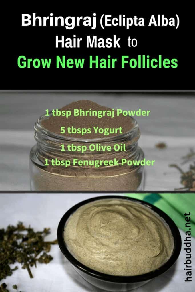 Bhringraj Hair Mask to Grow New Hair Follicles
