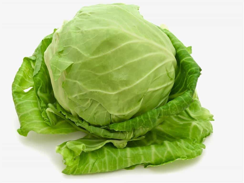 Cabbage for Hair Growth